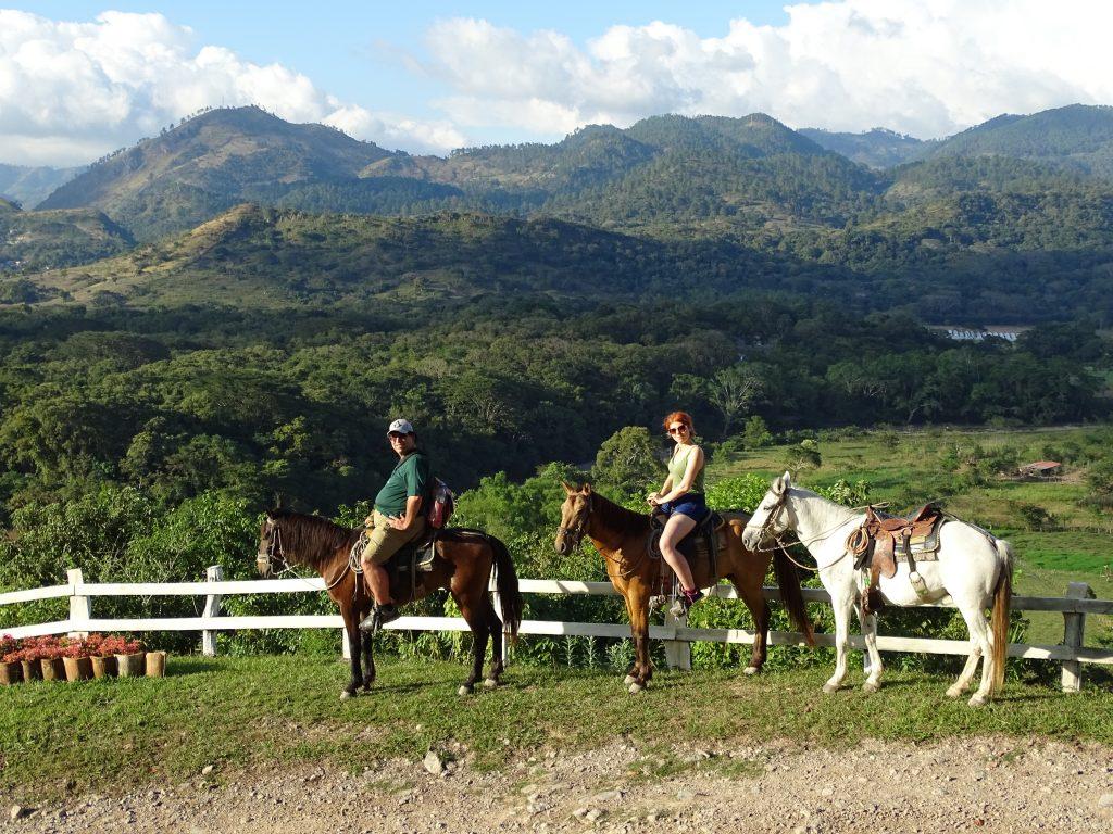 Horses Copan