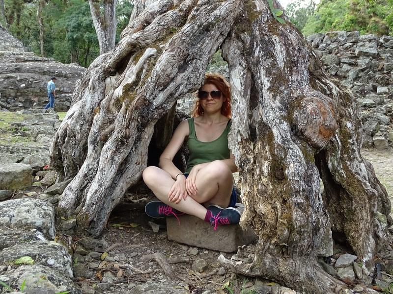 Copac Tropical