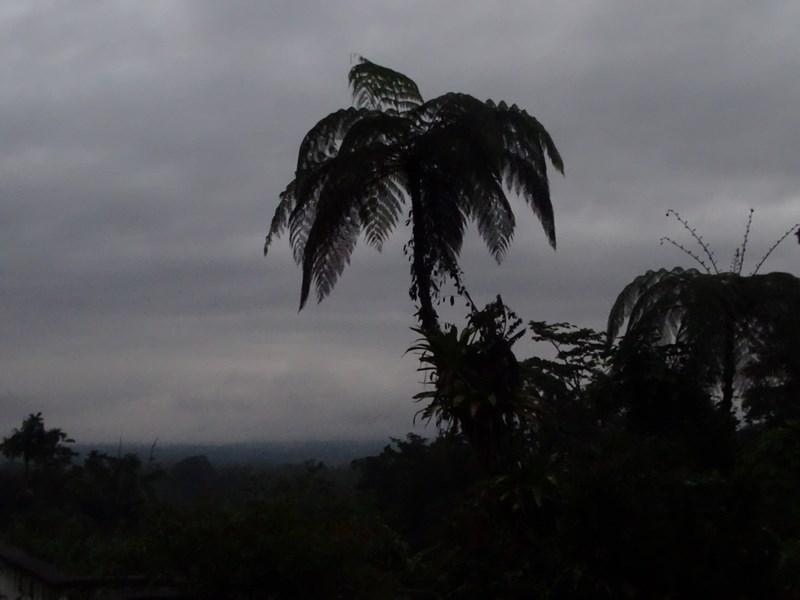 Apus Costa Rica