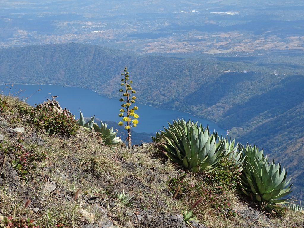 Panorama Coatepeque
