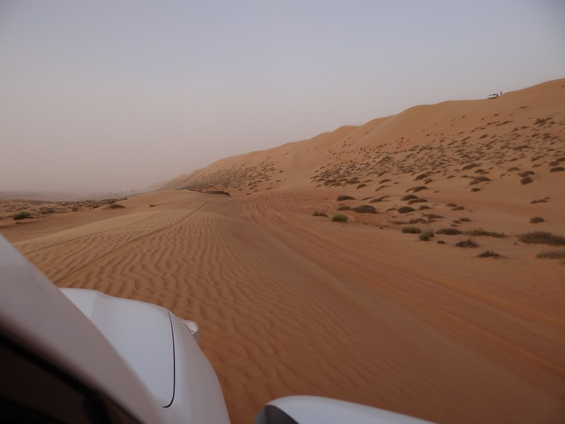 Dune Bashing Arabian Oryx Camp