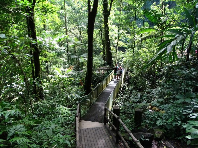 Traseu Spre Cascada