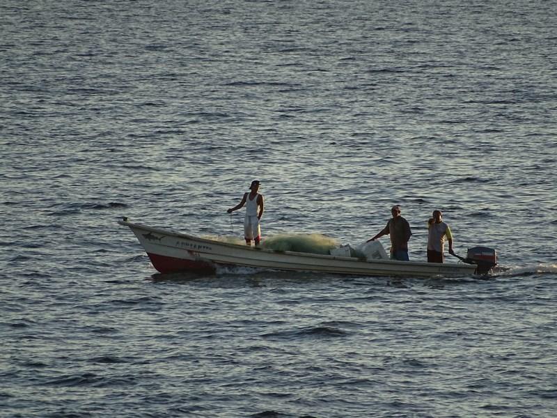 Pescari Seara