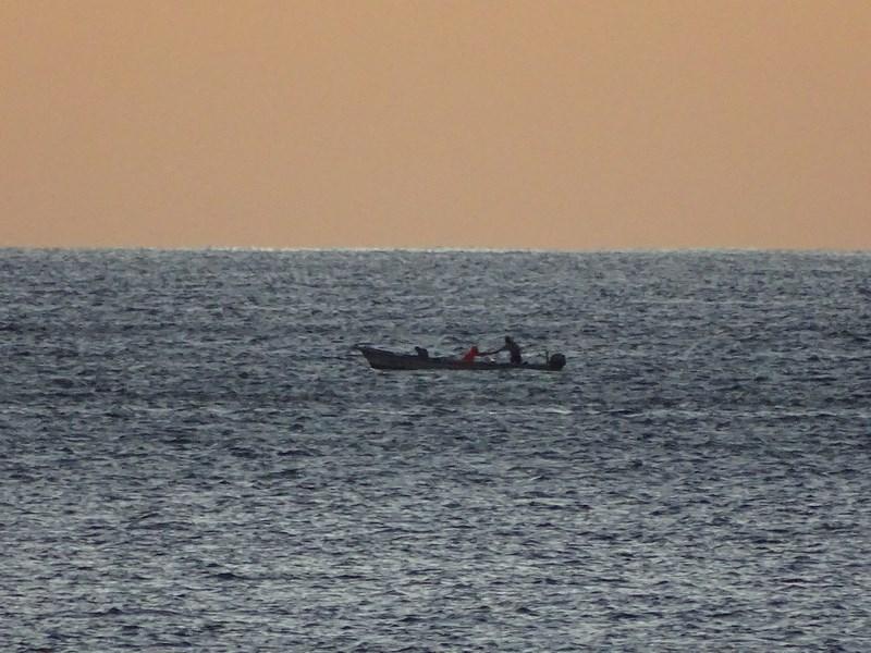 Pescari Dimineata