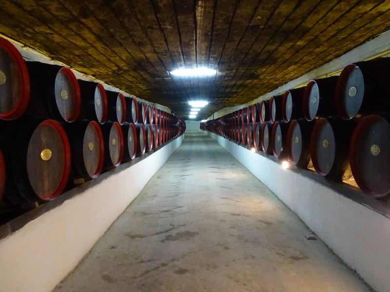 Tuneluri Cu Vin
