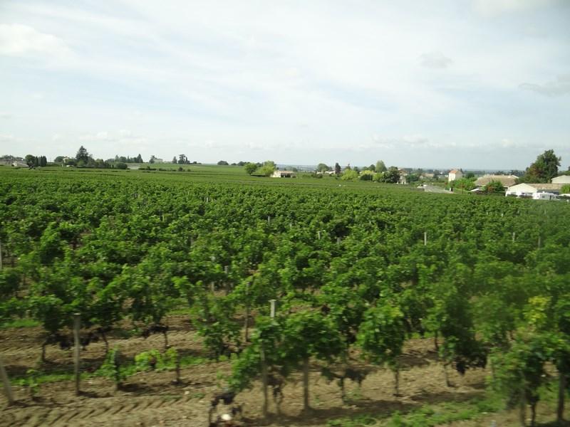 Vita De Vie Bordeaux