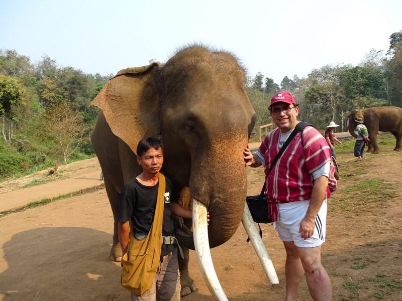 Elefant Cu Mahout