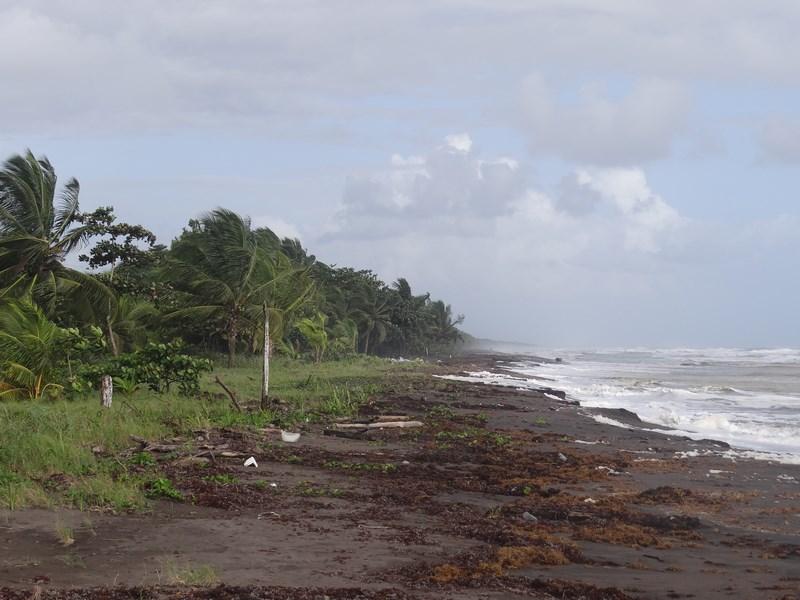 Plaja Neagra La Caraibe