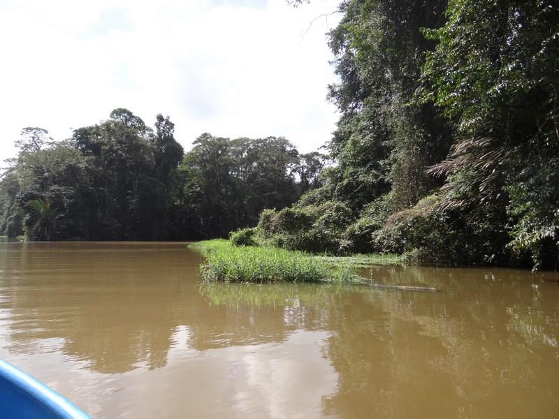 Delta Tortuguero