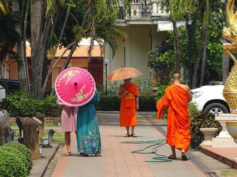 Umbrele In Chiang Mai
