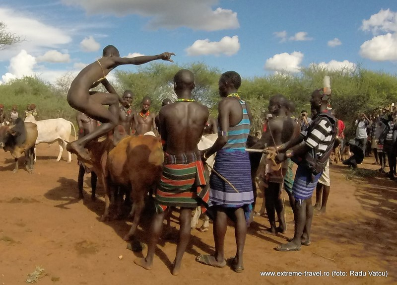 Bull Jumping Ceremony