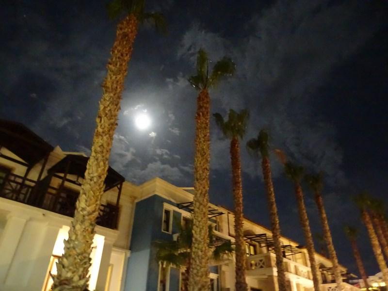 Luna Peste Hotel