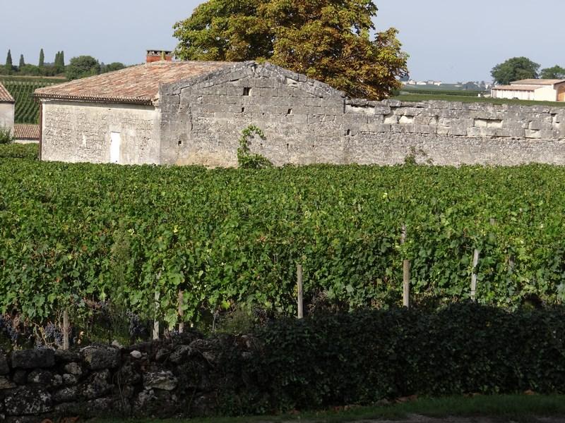 Podgorii Bordeaux