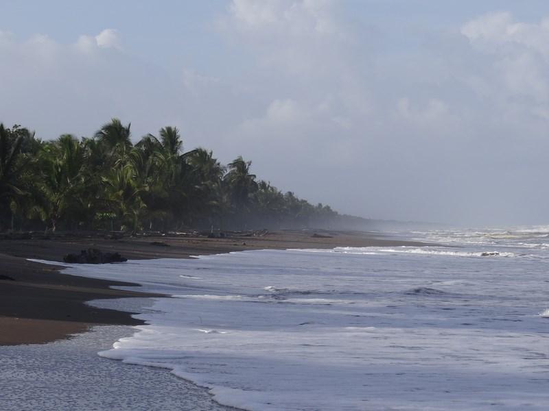 Plaja Tortuguero