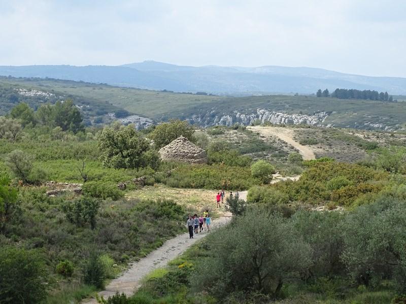 Drumul Spre Pestera