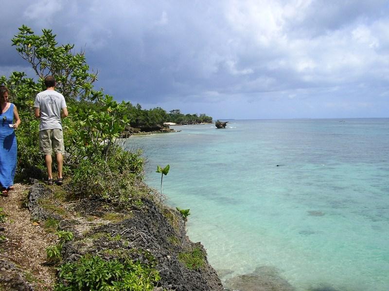 Mare In Zanzibar