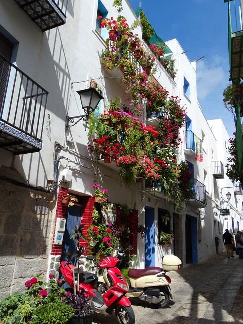 Casa In Flori