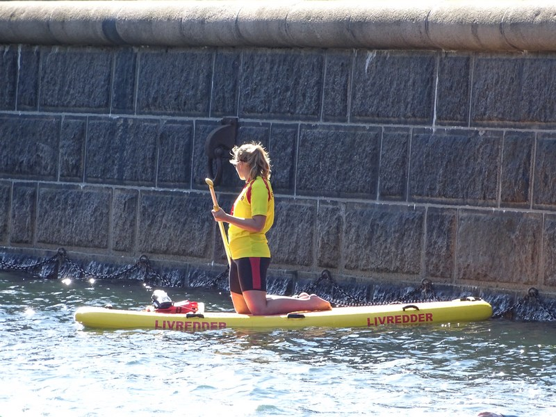 Stand Up Paddle Copenaga