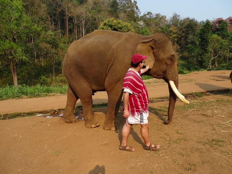 Ferma De Elefanti Patara