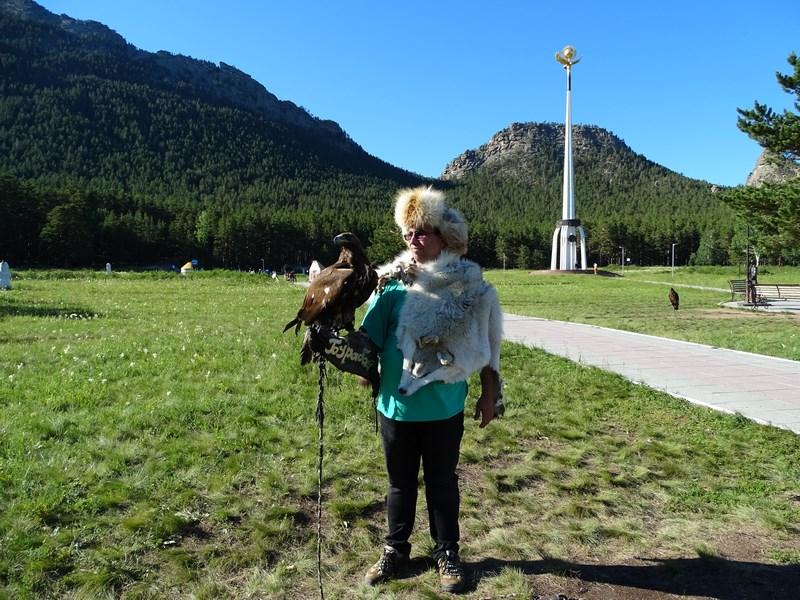 Vultur De Aur