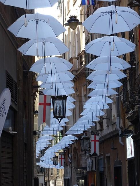 Umbrele Pe Strazi