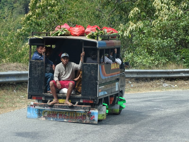 Transport In Comun Flores