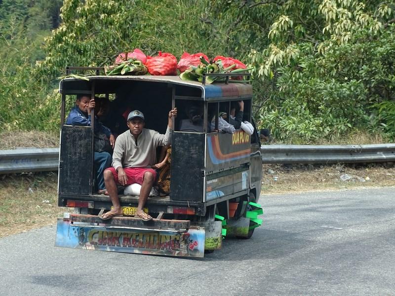 Transport In Comun Flores