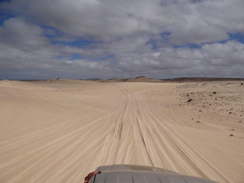 Prin Nisip