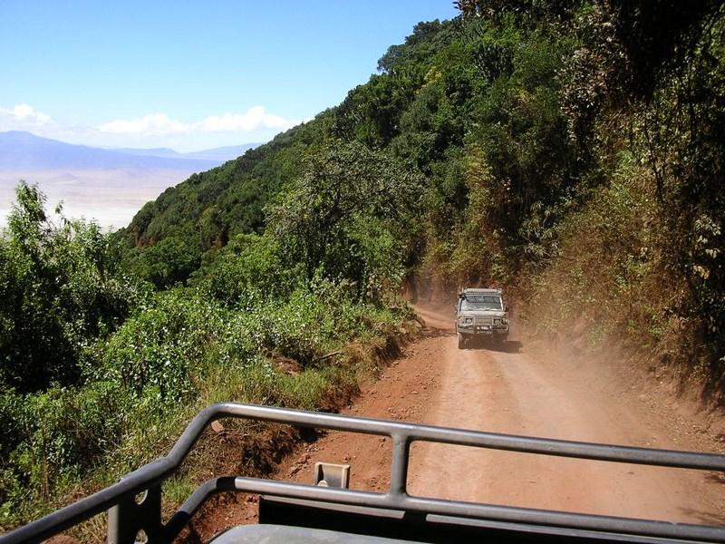 Drumul Spre Ngorongoro