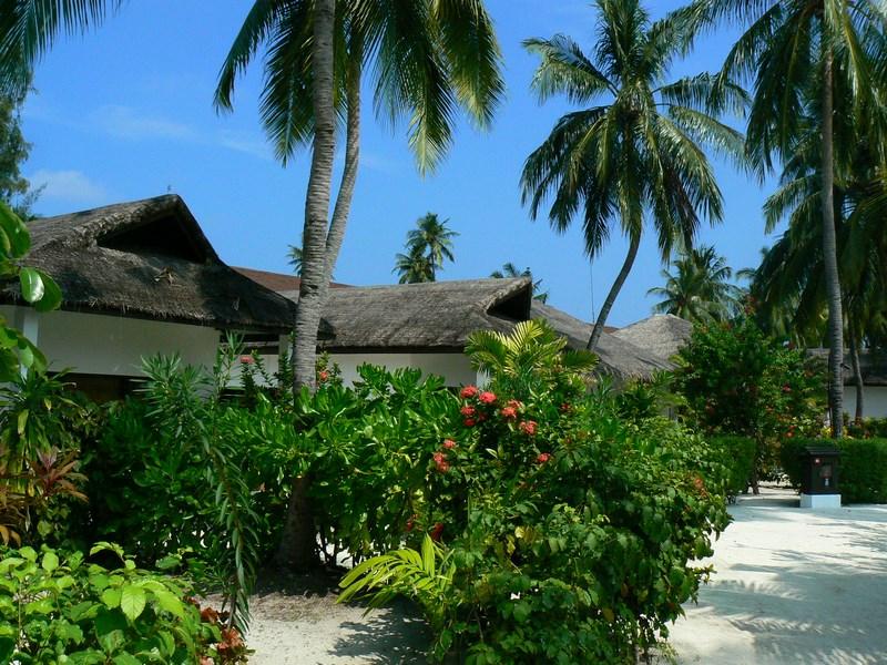 Statiune Maldive