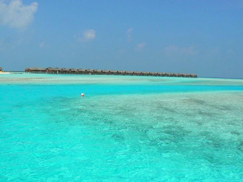 Apa Maldive