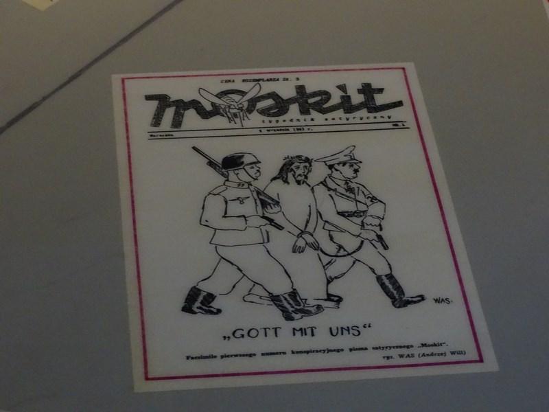 Caricaturi Anti Naziste