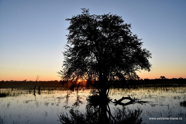 Apus De Soare In Botswana