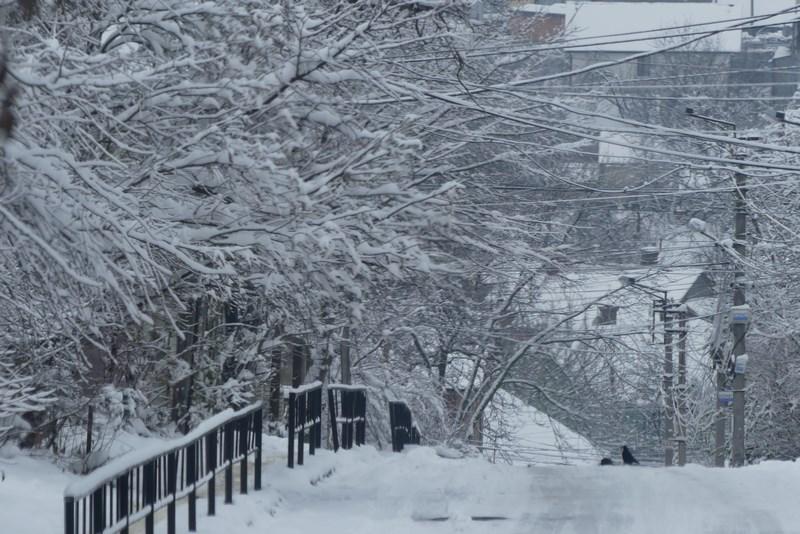 Cernauti Iarna