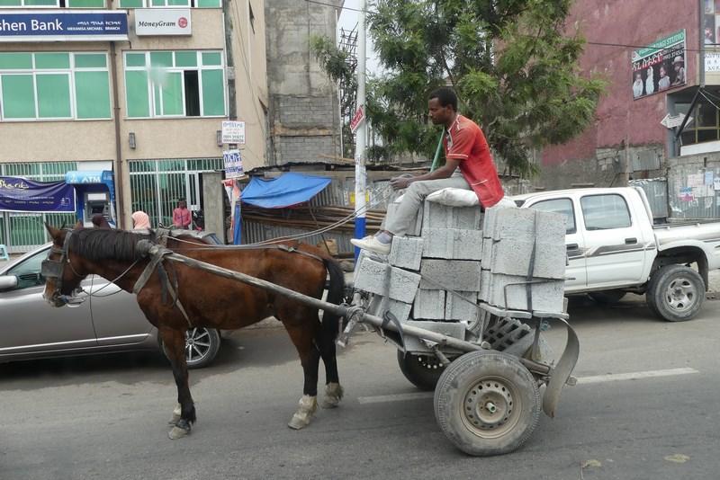 Transport Cu Calul
