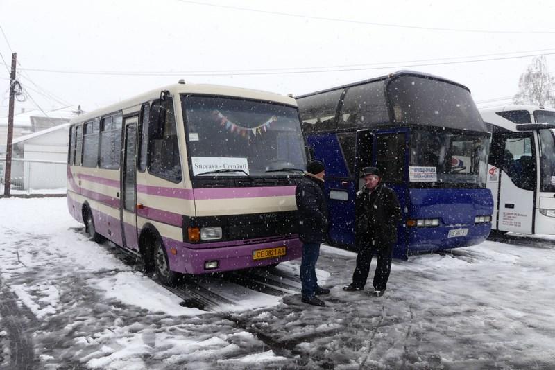 Autobuze Suceava Cernauti