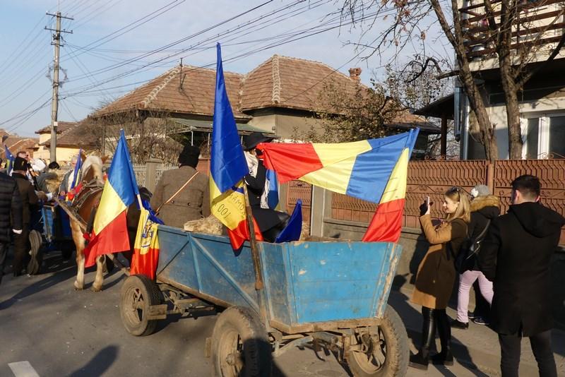 Carute Alba Iulia