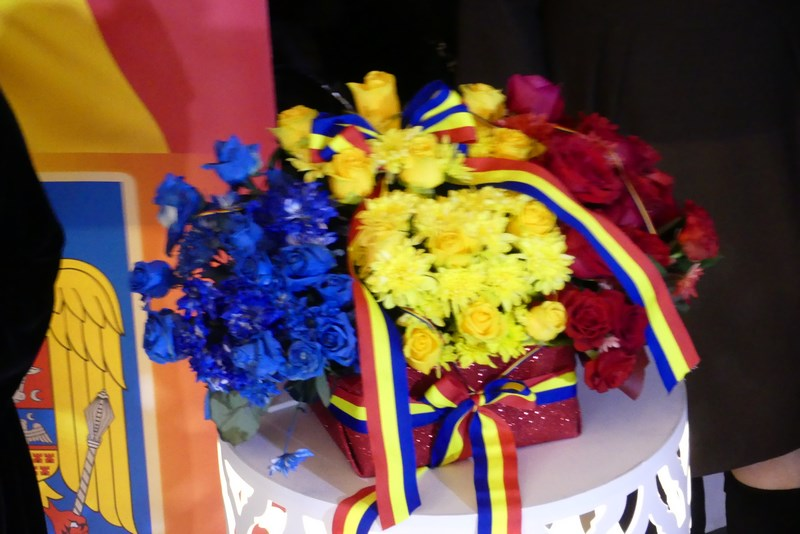 Flori Tricolor