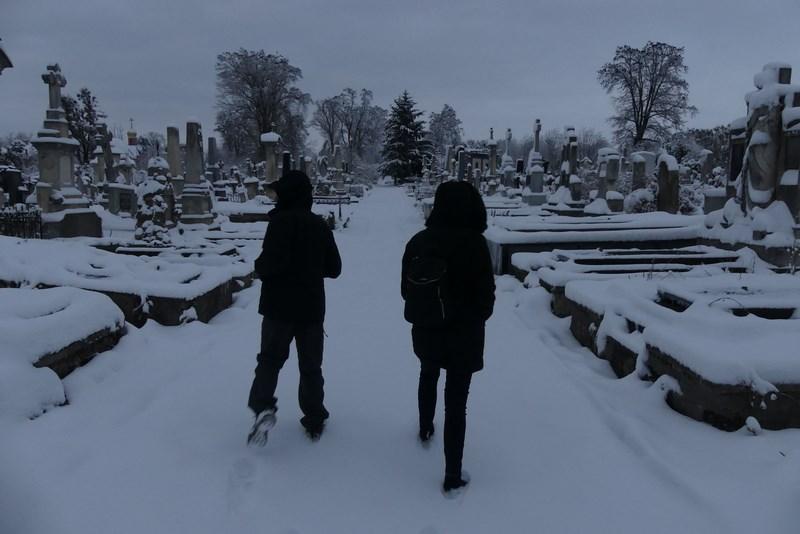 Cimitir Cernauti