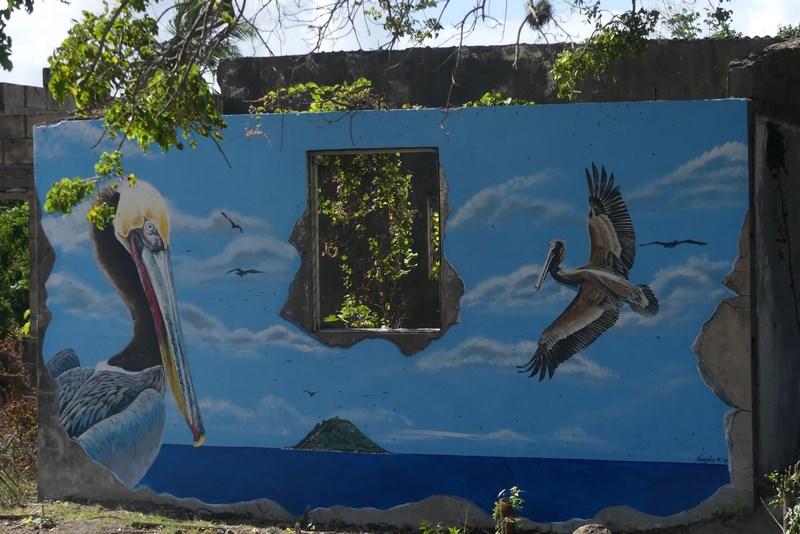 Grafitti Nevis