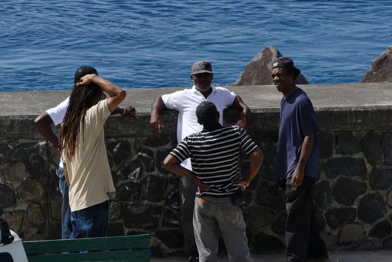 Soferi Dominica