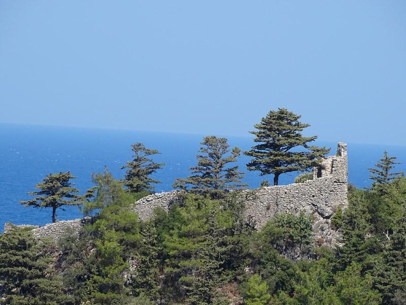 Cetate Samos