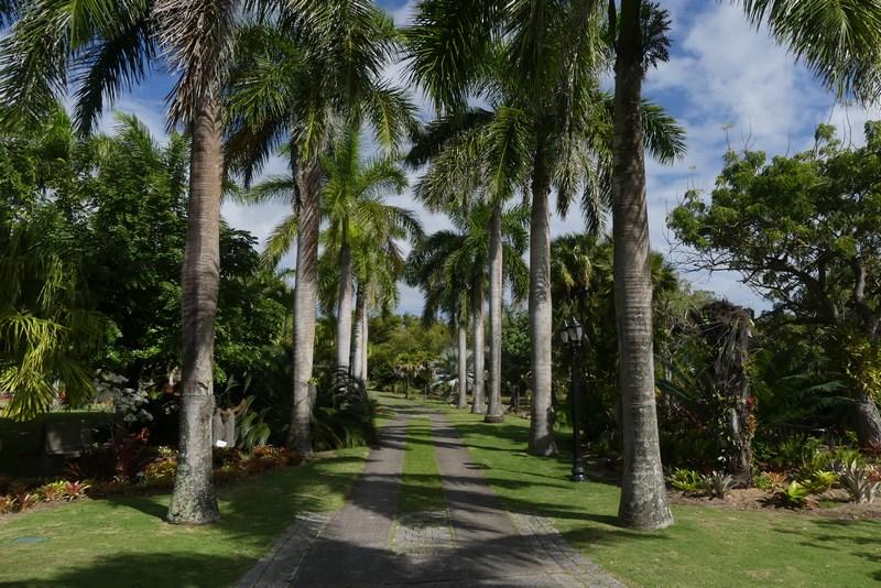 Gradina botanica Nevis