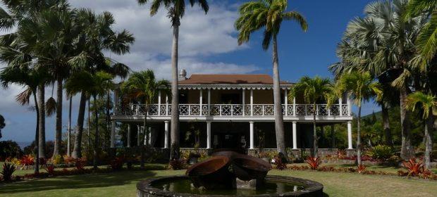 Botanical garden Nevis