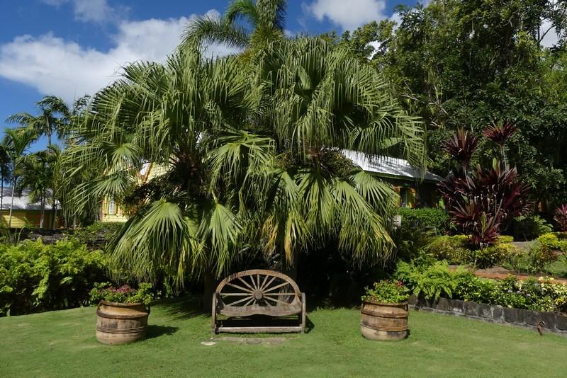 Romney Manor St. Kitts