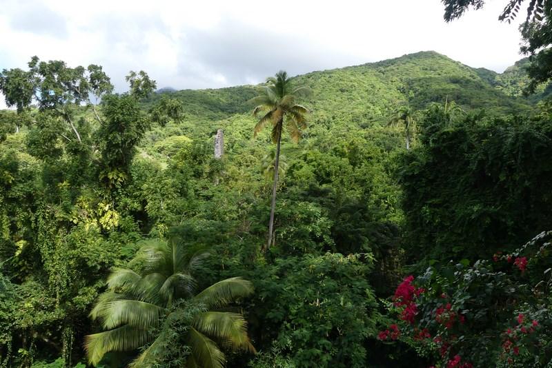 Vai St. Kitts
