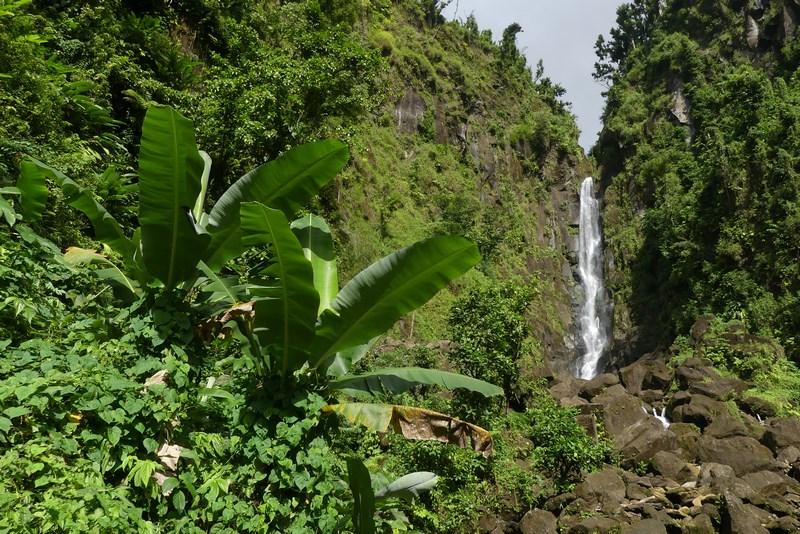 Cascada Tata