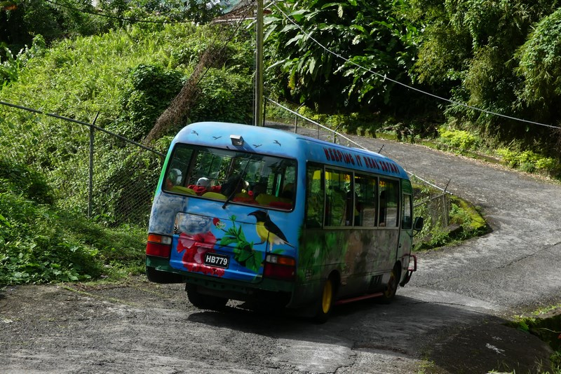 Bus turistic Dominica
