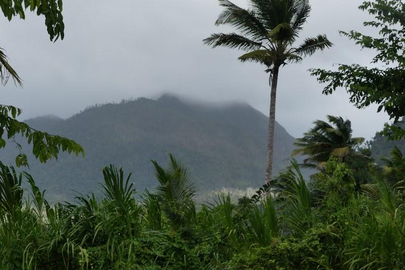 Ploaie caraibeana