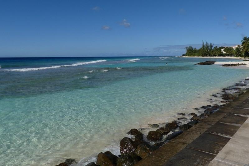 Mare Barbados